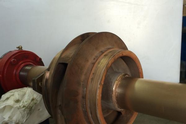 girante-di-pompa-centrifuga-bistadio0F7B0A8C-F89E-4F3F-73A4-1C5D128E140A.jpg
